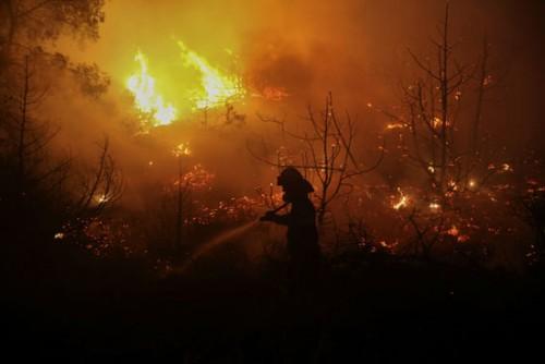 بالصور.. حريق ضخم بغابات جزيرة إيفيا اليونانية.. و120 رجل إطفاء يسيطرون