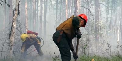 الحماية الجوية الروسية توضح حقيقة تقلص حرائق الغابات بسيبيريا.. (صور)