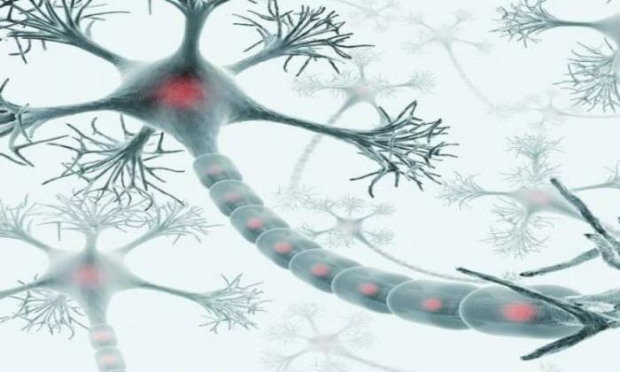أطباء السويد يكتشفون خلايا جديدة حساسة للألم