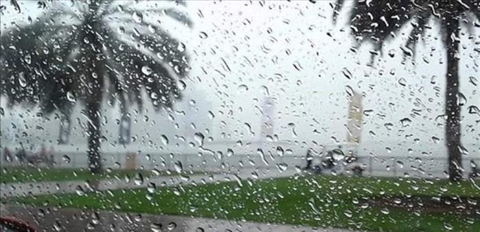 دراسة أمريكية تكشف وجود ألياف بلاستيكية في الأمطار الساقطة على جبل روكي (فيديو)