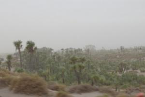 مليشيات الحوثي تقصف مواقع القوات المشتركة في الجبلية بالحديدة