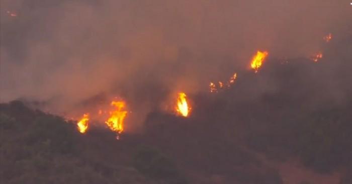 حريق ضخم بغابات في جزر الكناري.. والسلطات الإسبانية تخلي المنطقة