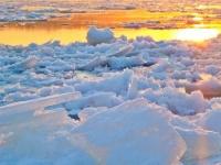 تحذيرات من تغير المناخ وتراجع جليد القطب الشمالي