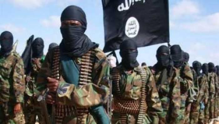 """مقتل 4 جنود نيجيريين في هجوم """"داعشي"""""""