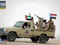 القوات الجنوبية تحارب الإرهاب في أبين (انفوجرافيك)