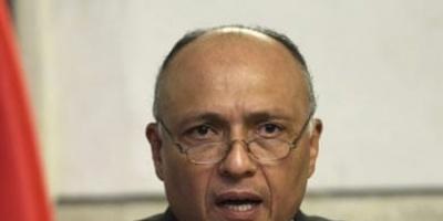 وزيرا الخارجية المصري والأرميني يبحثان العلاقات الثنائية بين البلدين