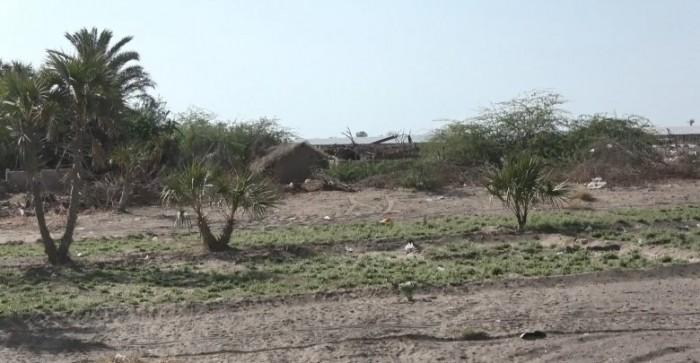 قصف حوثي مكثف على مواقع القوات المشتركة في الجبلية بالحديدة