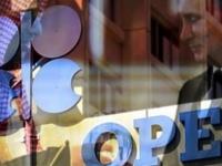 """الحرب التجارية بين أمريكا والصين وحدت أهداف ومصالح """"أوبك وروسيا"""" (تقرير)"""