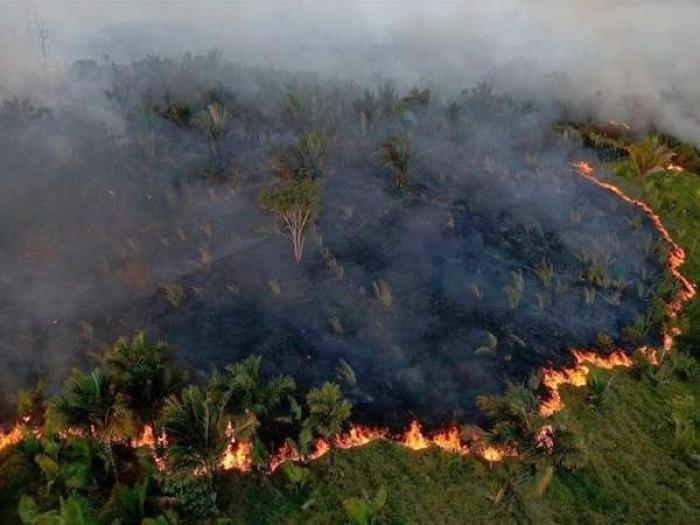الجيش البرازيلي يطلق عملية كبيرة للسيطرة على حرائق الأمازون