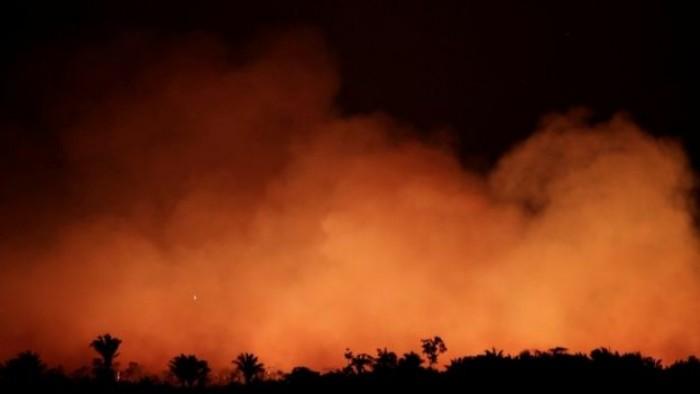 وزير الدفاع البرازيلي: حرائق الغابات في البلاد كارثية ولكنها تحت السيطرة