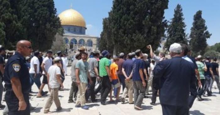 الأردن: يتعين اتخاذ موقف حازم من قوى المجتمع الدولى إزاء قوات الاحتلال الإسرائيلي