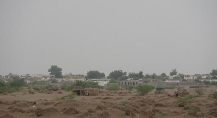 مليشيا الحوثي تجدد قصفها لمواقع القوات المشتركة بالتحيتا