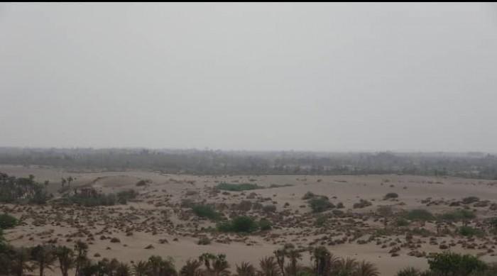 استهداف حوثي لمواقع القوات المشتركة في الجبلية