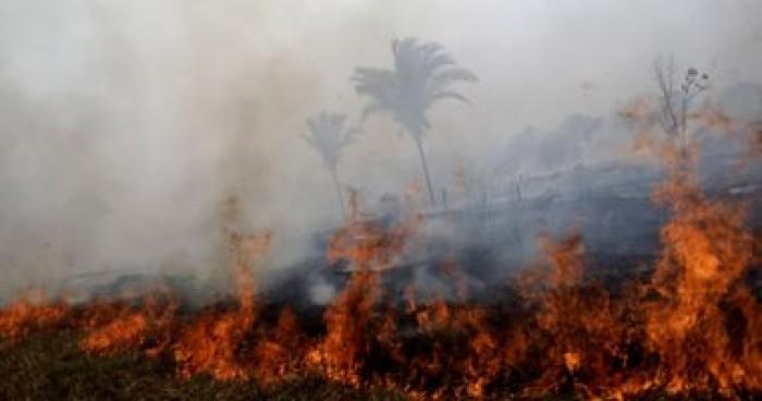 البرتغال: تحطم طائرة هليكوبتر خفيفة فى مكافحة حريق الغابات