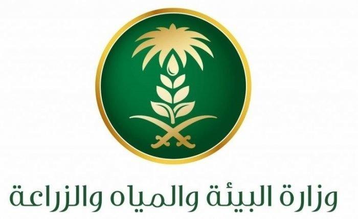 140 ألف طن إنتاج المصائد البحرية والاستزراع السمكي في السعودية