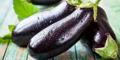 تناول الباذنجان الأسود.. لهذه الفوائد