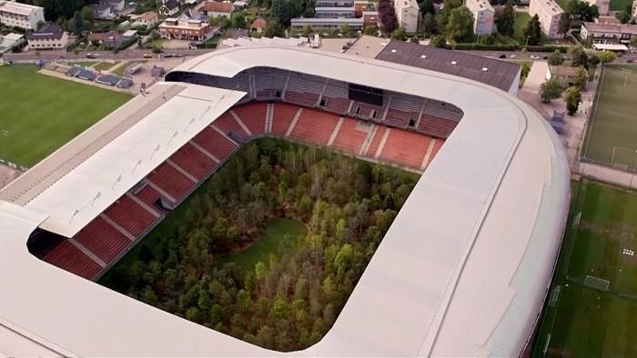 فنان نمساوي يحول ملعب كرة قدم إلى غابة بزراعة 300 شجرة