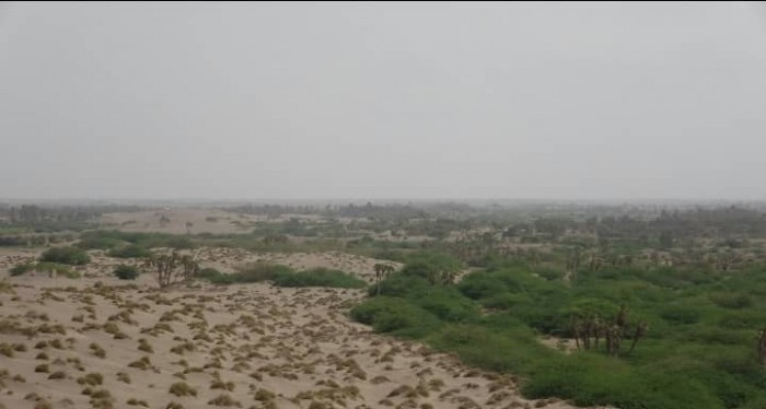 مليشيا الحوثي تقصف مواقع القوات المشتركة بالجبلية