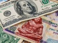 الدولار يتراجع مجدداً مقابل الجنيه المصري