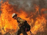حريق ضخم يُجبر السلطات اليونانية على إجلاء سكان قريتين