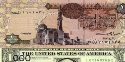 الدولار يواصل تراجعه في مصر