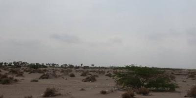 مليشيا الحوثي تواصل قصف مواقع القوات المشتركة بالجبلية