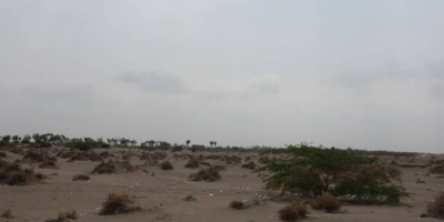المليشيات تستهدف مواقع القوات المشتركة في التحيتا والجبلية