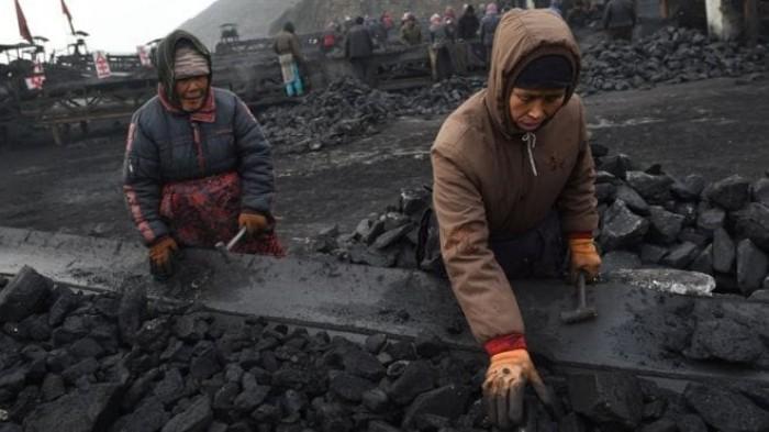 تراجع نمو إنتاج الفحم في الصين
