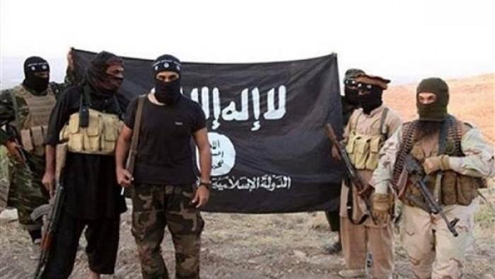 """مخطط إخواني شيطاني لتسهيل احتلال  """"القاعدة"""" و""""داعش"""" لمديرية لورد (تفاصيل)"""