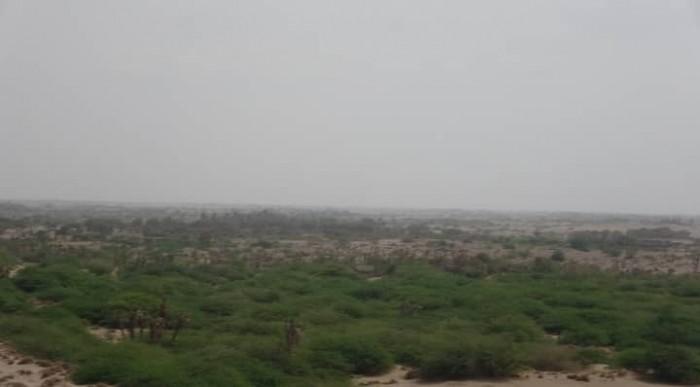 مليشيات الحوثي تدفع بتعزيزات عسكرية جديدة صوب الجبلية بالتحيتا