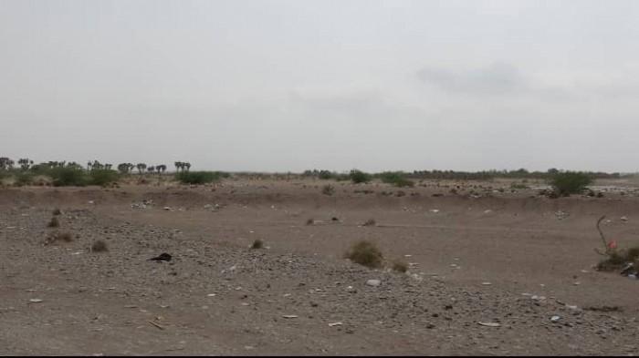 القوات المشتركة تحبط محاولة تسلل حوثي صوب مواقعها في الجبلية