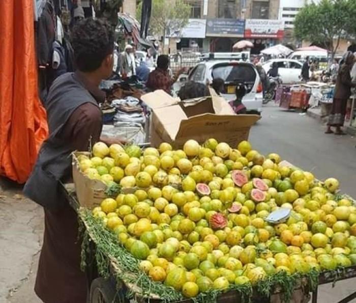 مليشيا الحوثي تنهب بائع صغير وسط صنعاء