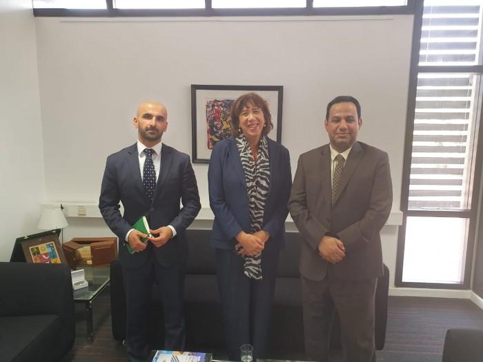 مسؤول بخارجية الانتقالي يلتقي سفيرة هولندا لدى اليمن