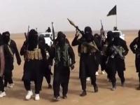 سعي أوروبي لإخراج الدواعش المحتجزين في سوريا لنقلهم إلى العراق
