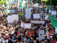 السلطة المستقلة للانتخابات بالجزائر تتخذ عدة إجراءات بشأن الانتخابات الرئاسية