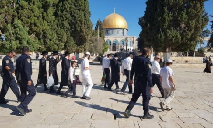 مستوطنون يقتحمون الأقصى تحت حراسة مشددة من الاحتلال