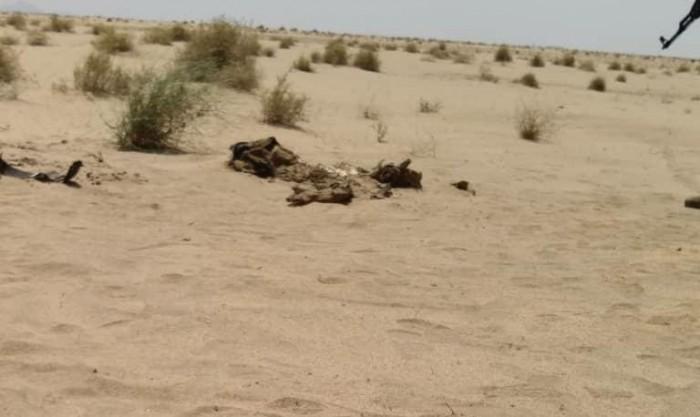 العثور على جثة مجهولة في صحراء لحج ..تفاصيل