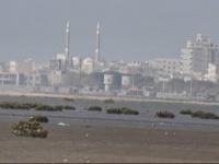 عمليات قصف حوثية لمواقع القوات المشتركة بالدريهمي