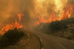 منظمة التعاون الإسلامي: متضامنون مع لبنان بعد اندلاع سلسلة من الحرائق