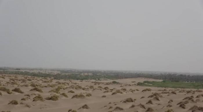 مليشيا الحوثي تقصف مواقع القوات المشتركة بالتحيتا