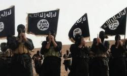 القرشي بديلا للبغدادي في زعامة تنظيم داعش