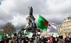 رسميًا.. قبول ملفات 5 مرشحين للرئاسة بالجزائر