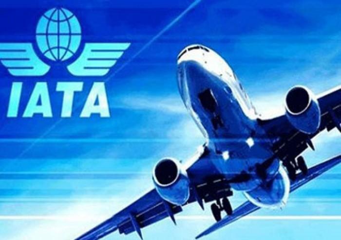 الاتحاد الدولي للنقل الجوي: أفريقيا تسجّل نموًا ملحوظًا في شحن البضائع