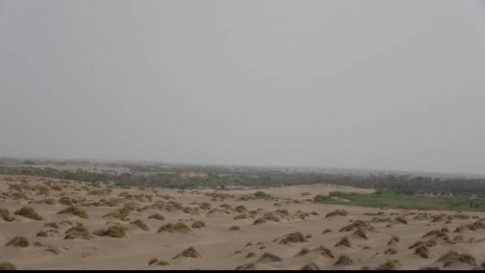 بقذائف الهاون والهاوزر.. مليشيا الحوثي تقصف مواقع القوات المشتركة في الجبلية
