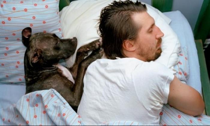 تعرف على شخصية حيوانك الأليف من طريقة نومه