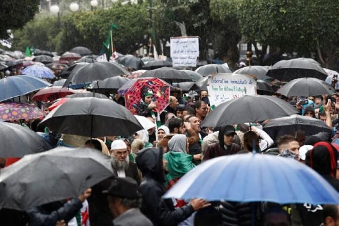 تجدد التظاهرات المطالبة بتأجيل الانتخابات الجزائرية