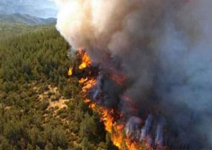 استمرار حرائق الغابات على طول الساحل الشرقي لاستراليا