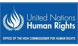 حقوق الإنسان بالأمم المتحدة تدين الاستيطان الإسرائيلي وتعتبره خرقا للقانون الدولي