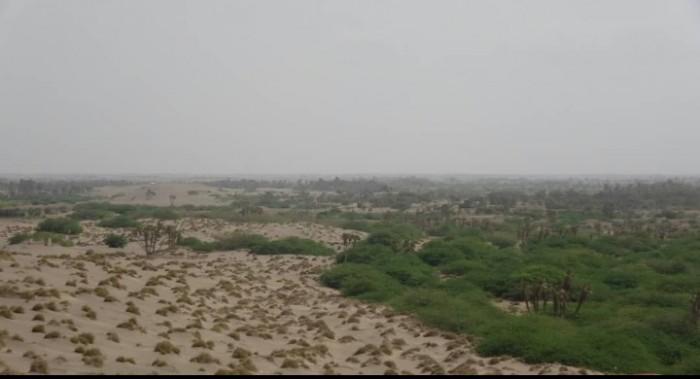 في خرقٍ جديد للهدنة.. مليشيا الحوثي تستهدف القوات المشتركة بالجبلية