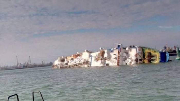 انقلاب سفينة شحن تحمل 14 ألف رأس ماشية في سواحل رومانيا